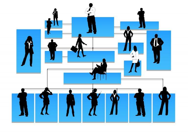 Lee más sobre el artículo Administración de Pequeña vs Grande Empresa